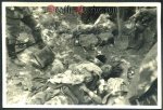 orig. WW2 Photo - KIA Soldier in France 1940