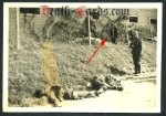 orig. WWII Photo - killed french soldiers - attempted escape - Westfront 1940